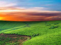 природа, красивая, небо