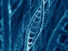 днк, molecule, ученый