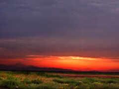 закат, iranian, red