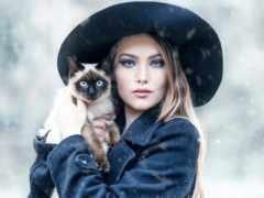 кот, автор, девушка