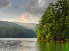природа, река, fore