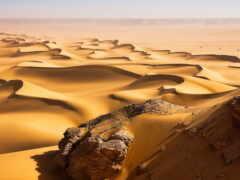 пустыня, company, tourism