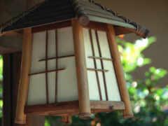 lantern, sibovat, китаянка