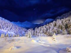 winter, зимушка, небо