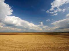 поле, чистое, небо