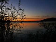high, free, lakes
