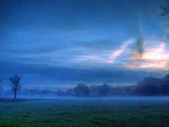 поле, красивые, вечер