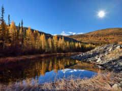 отражение, утро, река