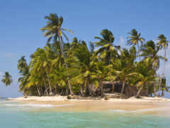 пальмы, остров, пальмами