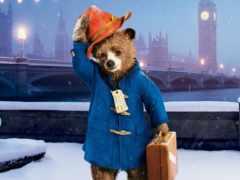 paddington, медвежонок, медвежонка