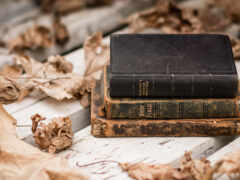 книга, лист, йога