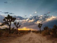 пустыня, мохаве, дорога