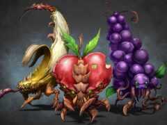 плод, арта