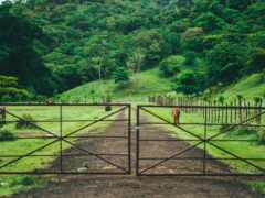 gates, stable, panama