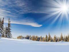 снег, winter, sun
