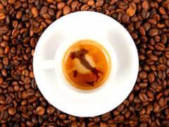 tablouri, cafea, cafenea