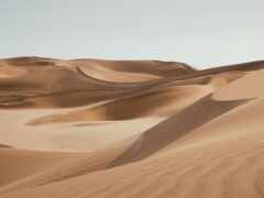 пустыня, эрг, dune