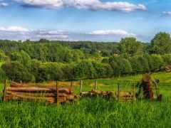 природа, поле, amazing