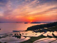 japanese, японии, природа