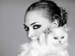 кошки, devushki, красивые