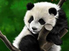 панда, дерево, diamond