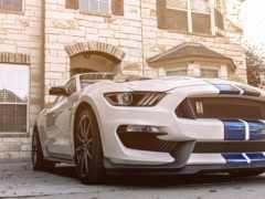 ford, white, машины