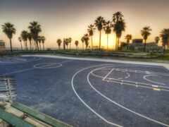 баскетбол, palm, losyi
