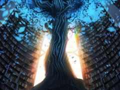 дерево, картинка, ствол