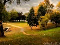 широкоформатные, природа, осень