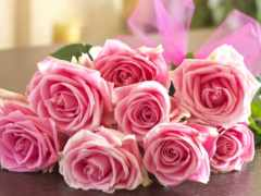 розы, букет, cvety