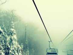 туман, winter, природа