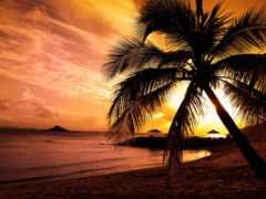 море, закат, берег