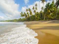 praia, fotos, dia