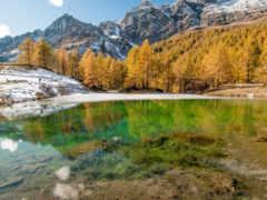 paysage, lac, природа
