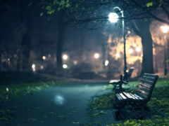 скамейка, вечер, романтика