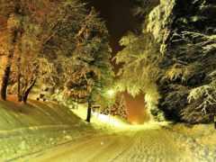зима, дорога Фон № 32248 разрешение 1920x1080