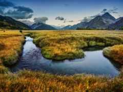 zealand, new, зеландия