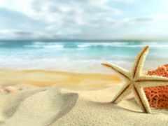 море, summer, пляж