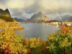 norwegian, осень, reine