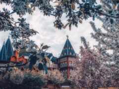 tourist, fond, дворец