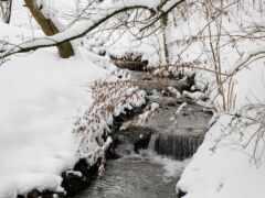 снег, zima, sugrob