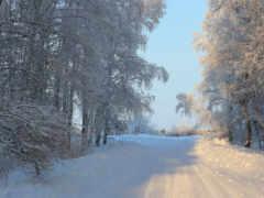 дорога, зима Фон № 46557 разрешение 1920x1200