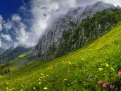 луг, гора, склон