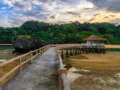 фон, landscape, wooden