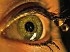 глаз, makryi, ресница