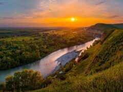 река, broadleaf, mix