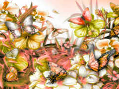 cvety, природа, бабочки