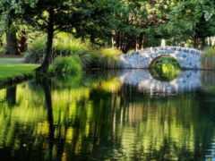пе, natural, landscape