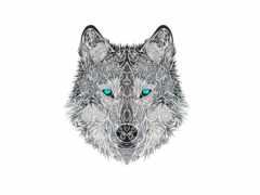 волк, drawing