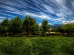 природа, лес, горы
